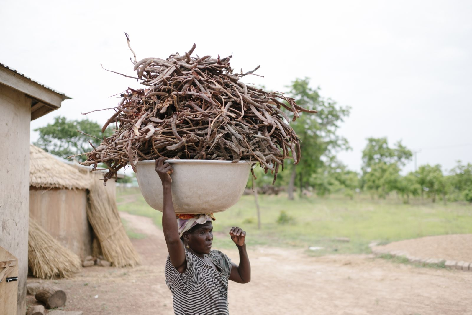 Ecosia's Tree planting officer visits Ecosia's project in Ghana