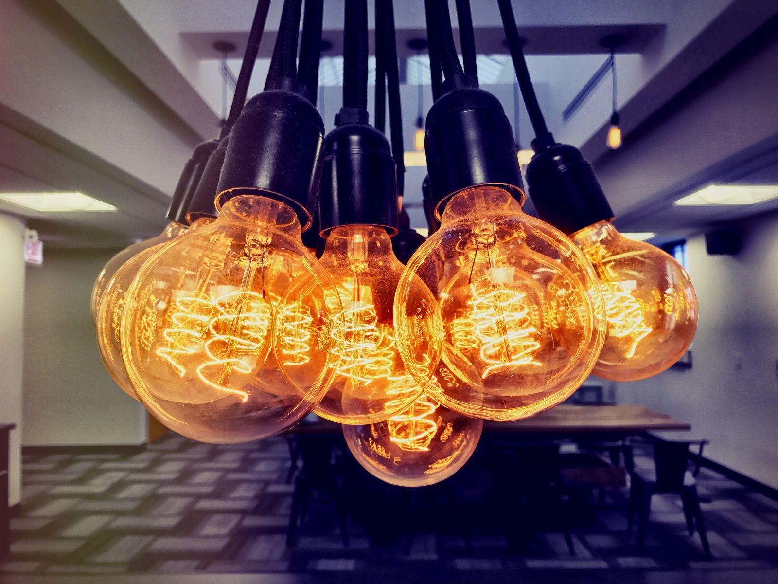 A flock of bulbs