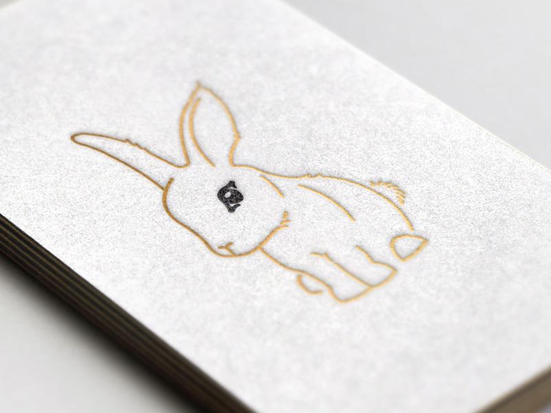 white_rabbit_small
